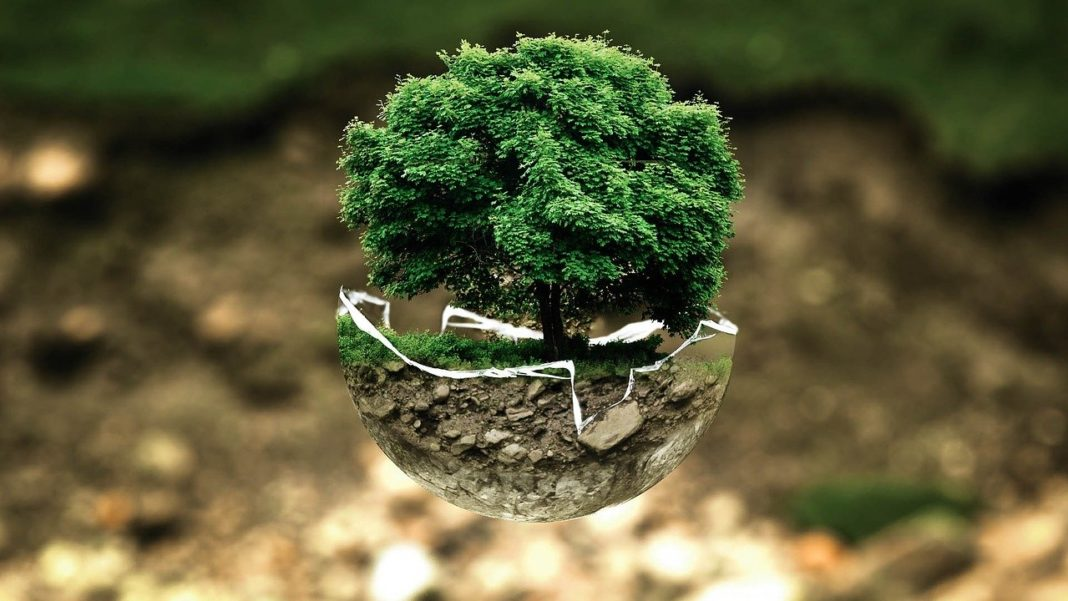 ekologie, ochrana životního prostředí, země, příroda, eco